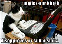 Moderator cat