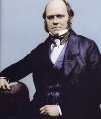 Darwin_1854-coloarized