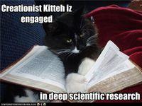 Creationist-cat
