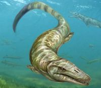 Mosasaur-405x355