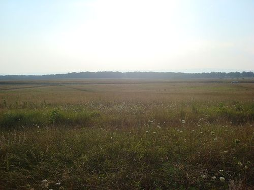 800px-Picketts_Charge_Field
