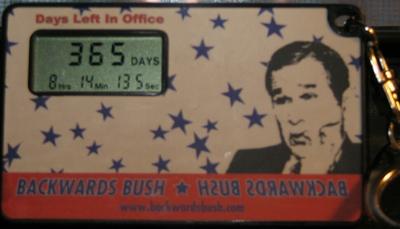 Backwards_bush1_year_4